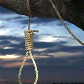 جثة خادمة معلقة على شجرة