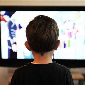 تعميم هام من الوزيرالرياشي الى وسائل الاعلام المرئية والمسموعة