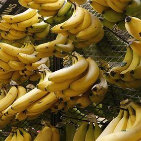قد تكون مميتة.. أطعمة يمنع تناولها مع الموز
