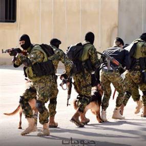 قوات النخبة.. لإجتثاث الجماعات الإرهابية من عين الحلوة