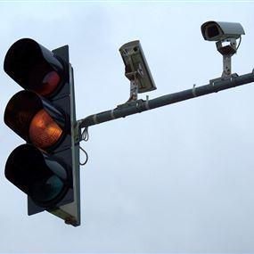 بالصور.. أفعى قاتلة تعطِّل الإشارة الضوئية في النّقاش!