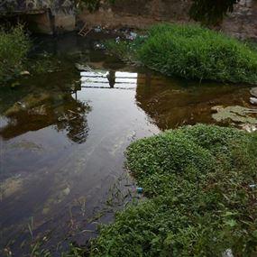 بالصور: نهر أنطلياس أشبه بمستوعب للنفايات!