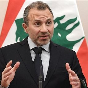 باسيل: شو حلو تعاضد اللبنانيين وهبّة المنتشرين لمواجهة كورونا