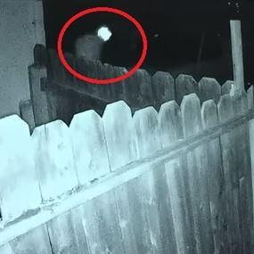 بالفيديو: أرادا أن يسرقا المنزل.. فخرجا منه جثّتين!