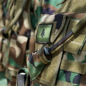 الجيش يوقف ستة أشخاص في بلدة القصر...