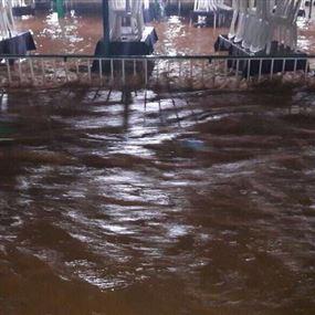 بالصور والفيديو: مطاعم نهر العاصي تغرق بالمياه