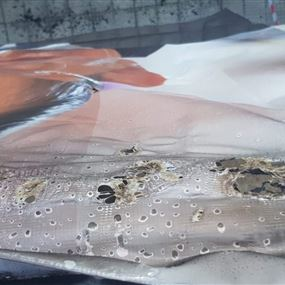 بالفيديو: لحظة القاء قنبلة مولوتوف على مكتب التيار في جونية