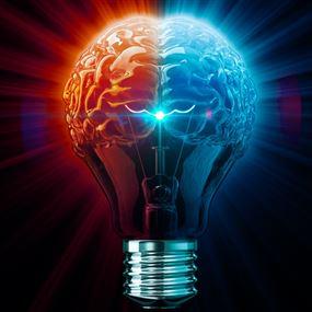 الكهرباء تحت الضوء...