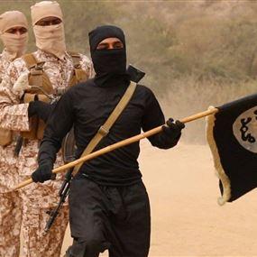 داعش يعلن قتله 30 جنديًا نيجيريًا بهجوم في ولاية بورنو