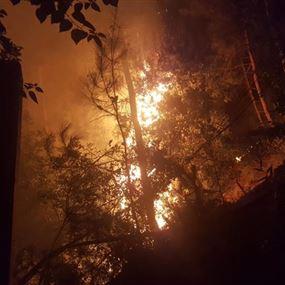 بالصور: استقدام طوافة عسكرية لاخماد حريق ساحل علما