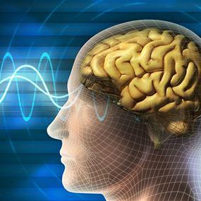 الكحول والجنس.. وقود الدماغ لتحسين الذاكرة