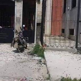 بالصور: خوف وهلع.. أسراب من الكالوسوما تغزو سوريا!