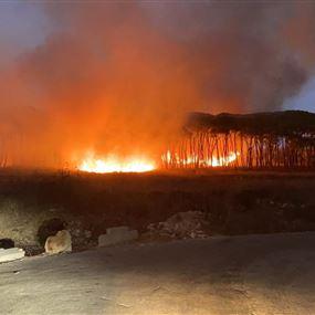 حريق كبير في دير القمر (صور)