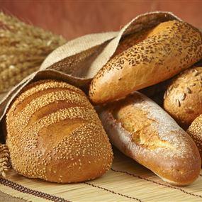 إقفال مصنع للخبز الإفرنجي في سهيلة كسروان