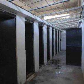 تقرير دولي يكذّب رواية النظام السوري بشأن وفيات المعتقلين